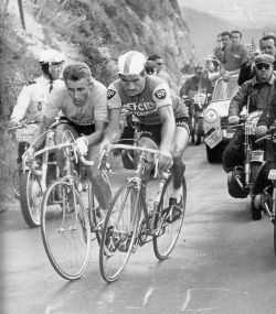 Jacques_Anquetil_&_Raymond_Poulidor